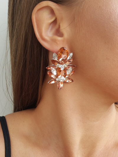 Crystal Earrings 482